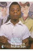 Cover-Bild zu Notes of a Native Son von Baldwin, James