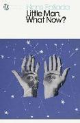 Cover-Bild zu Little Man, What Now? (eBook) von Fallada, Hans