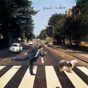 Cover-Bild zu Paul Is Live (Remastered) von McCartney, Paul (Komponist)
