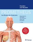 Cover-Bild zu PROMETHEUS LernPoster der Anatomie, Knochen und Muskeln von Schünke, Michael