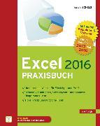 Cover-Bild zu Excel 2016 Praxisbuch (eBook) von Schels, Ignatz