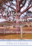 Cover-Bild zu Petrea Downs von Harris, Olwyn