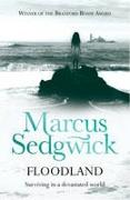 Cover-Bild zu Sedgwick, Marcus: Floodland (eBook)