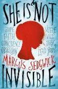 Cover-Bild zu Sedgwick, Marcus: She Is Not Invisible (eBook)