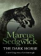 Cover-Bild zu Sedgwick, Marcus: The Dark Horse (eBook)