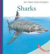 Cover-Bild zu Sharks von Fuhr, Ute
