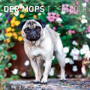 Cover-Bild zu Der Mops 2022 - Broschürenkalender 30x30 cm (30x60 geöffnet) - Kalender mit Platz für Notizen - Pug Dog - Bildkalender - Wandkalender - Hundekalender von ALPHA EDITION (Hrsg.)