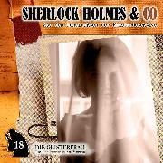 Cover-Bild zu Sherlock Holmes & Co, Folge 18: Die Geisterfrau (Audio Download) von Futrelle, Jacques
