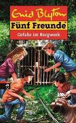 Cover-Bild zu Fünf Freunde - Gefahr im Bergwerk von Blyton, Enid