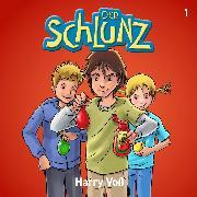 Cover-Bild zu Der Schlunz (Audio Download) von Voß, Harry