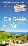 Cover-Bild zu Die Seele geht am liebsten zu Fuß von Müller, Peter