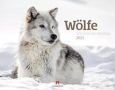 Cover-Bild zu Wölfe - Wächter der Wildnis Kalender 2021 von Ackermann Kunstverlag (Hrsg.)