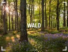 Cover-Bild zu Wald - Ackermann Gallery Kalender 2021 von Ackermann Kunstverlag (Hrsg.)