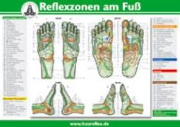 Cover-Bild zu Die Reflexzonen der Füße von Marquardt, Hanne