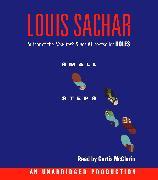Cover-Bild zu Small Steps von Sachar, Louis
