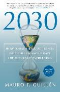 Cover-Bild zu Guillen, Mauro F.: 2030: How Today's Biggest Trends Will Collide and Reshape the Future of Everything