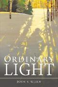 Cover-Bild zu Green, John S.: Ordinary Light (eBook)