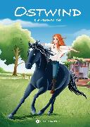 Cover-Bild zu Thilo: Ostwind - Die rettende Idee (eBook)