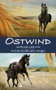 Cover-Bild zu Schmidbauer, Lea: OSTWIND