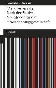 Cover-Bild zu Terkessidis, Mark: Nach der Flucht (eBook)