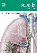 Cover-Bild zu Sobotta Lernkarten Organe und Leitungsbahnen von Bräuer, Lars