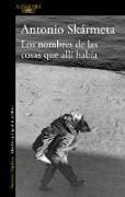 Cover-Bild zu Los Nombres de Las Cosas Que Allí Había / The Names of the Things That Were There von Skarmeta, Antonio