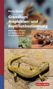 Cover-Bild zu Grundkurs Amphibien- und Reptilienbestimmung von Glandt, Dieter