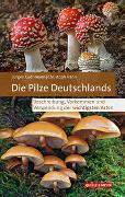 Cover-Bild zu Die Pilze Deutschlands von Guthmann, Jürgen