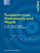 Fundamentum Mathematik und Physik von DMK Deutschschweiz (Hrsg.)