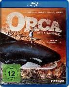 Cover-Bild zu Vincenzoni, Luciano: Orca der Killerwal
