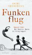 Cover-Bild zu Friederichs, Hauke: Funkenflug