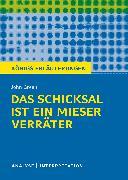 Cover-Bild zu Green, John: Königs Erläuterungen: Das Schicksal ist ein mieser Verräter von John Green (eBook)