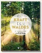 Cover-Bild zu Die Kraft des Waldes