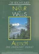 Cover-Bild zu Aletsch eine Landschaft erzählt