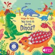 Cover-Bild zu Klänge der Natur: Was hörst du bei den Dinos? von Taplin, Sam
