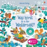 Cover-Bild zu Was hörst du in der Winterzeit? von Taplin, Sam