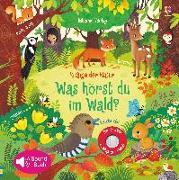 Cover-Bild zu Klänge der Natur: Was hörst du im Wald? von Taplin, Sam