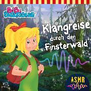 Cover-Bild zu Bibi Blocksberg - Klangreise durch den Finsterwald (ASMR) (Audio Download) von Studios, KIDDINX