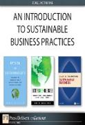 Cover-Bild zu An Introduction to Sustainable Business Practices (Collection) (eBook) von Clegg, Brian