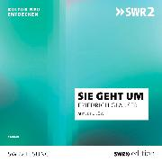 Cover-Bild zu Glauser, Friedrich: Sie geht um (Audio Download)