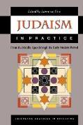 Cover-Bild zu Fine, Lawrence (Hrsg.): Judaism in Practice