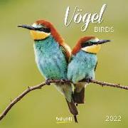 Cover-Bild zu Vögel 2022 von Korsch, Verlag (Hrsg.)