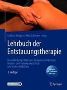 Cover-Bild zu Lehrbuch der Entstauungstherapie von Siems, Werner (Vorb.)