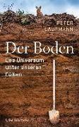 Cover-Bild zu Der Boden von Laufmann, Peter
