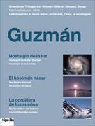 Cover-Bild zu Guzmán - Trilogie der Heimat