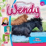 Cover-Bild zu Wendy - Folge 76: Onyx in Gefahr (Audio Download)
