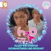 Cover-Bild zu 23: Alles wie damals / Schwarzweiß und brisant (Audio Download) von Karallus, Thomas