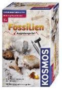 Cover-Bild zu Fossilien