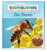 Cover-Bild zu Meine große Tierbibliothek: Die Biene von Starosta, Paul