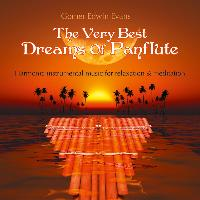 Cover-Bild zu The very best Dreams of Panflute